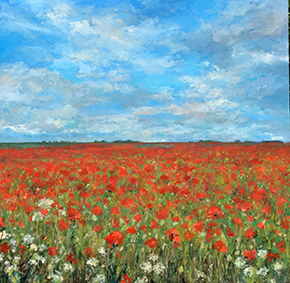 Norfolk Poppy Field 2
